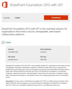 SharePoint Foundation 2013 Search issue